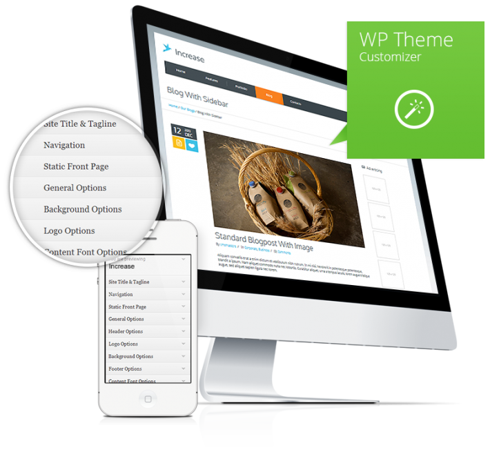 WP-Theme-Customizer